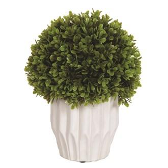 Round Green Topiary White Pot 60cm