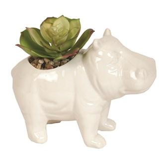 Artificial Succulent in Hippo Pot 11.5cm