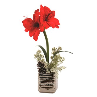 Icy Orchid Red 61cm