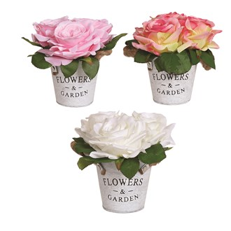Rose Pot 17cm 3 Assorted