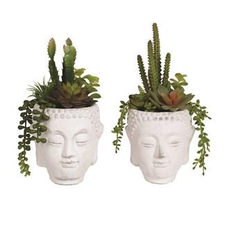 Succulent Buddha Pot 23cm 2 Assorted