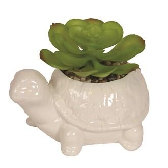 Artificial Succulent in Turtle Pot 9cm