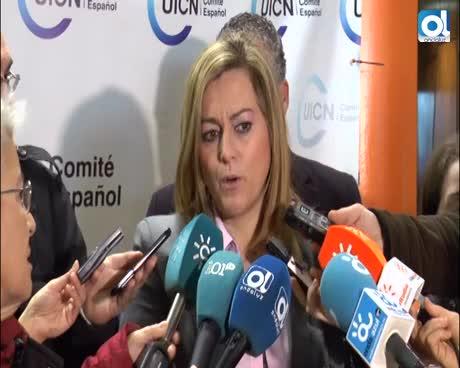 La Junta da luz verde a La Academia del Málaga CF con la aprobación del Plan Especial de Arraijanal