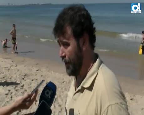 La Junta libera en El Puerto tres tortugas bobas rehabilitadas en el Centro del Medio Marino del Estrecho