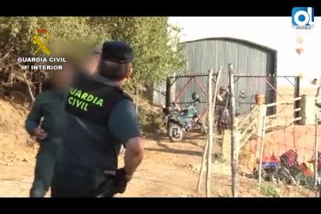 La Junta descarta que la brucelosis en cabras haya pasado al consumo