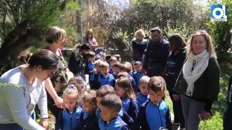 Escolares roteños conocen mejor el parque botánico 'Celestino Mutis'