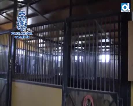 Operación Lepanto: 22 kilos de cocaína incautados y diez detenidos