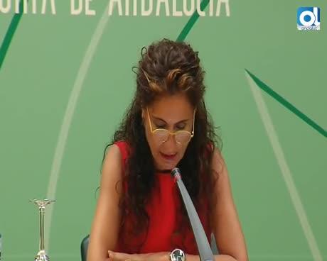 Andalucía aflora 411 millones de euros de fraude fiscal