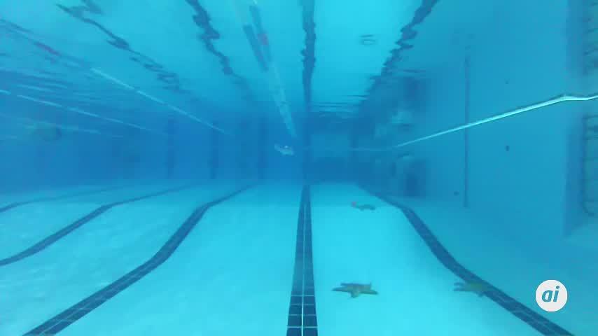 Miles de niños disfrutan en Huelva de un belén dentro de una piscina