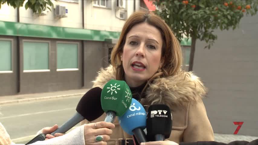 Psoe Málaga pide la unión entre partidos contra la violencia machista