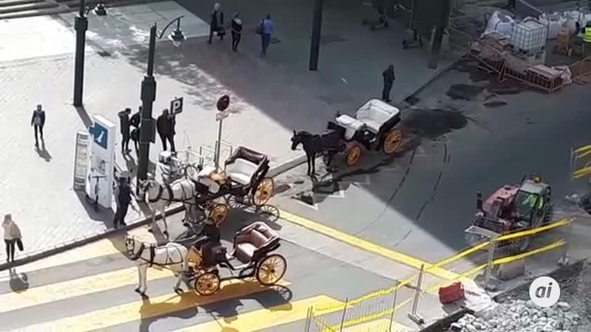 """Alertan de """"maltrato animal"""" a los caballos del centro de Málaga"""
