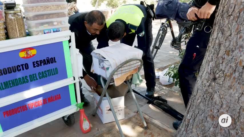 Recuperan y trasladan al Zoosanitario de Málaga a una ardilla herida