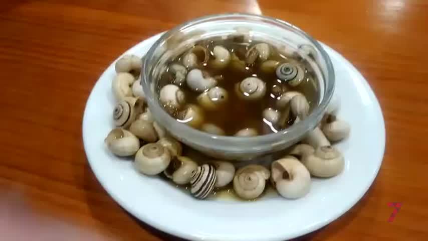 ODCA, la guía Michelín de los caracoles en Sevilla