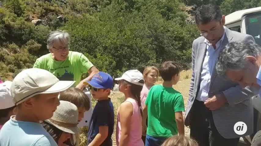Devuelven a la naturaleza un zorro y un cernícalo del CREA de Málaga