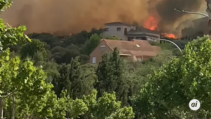 Resultado de imagen de incendio en toledo y la protectora de san bernardo ayer