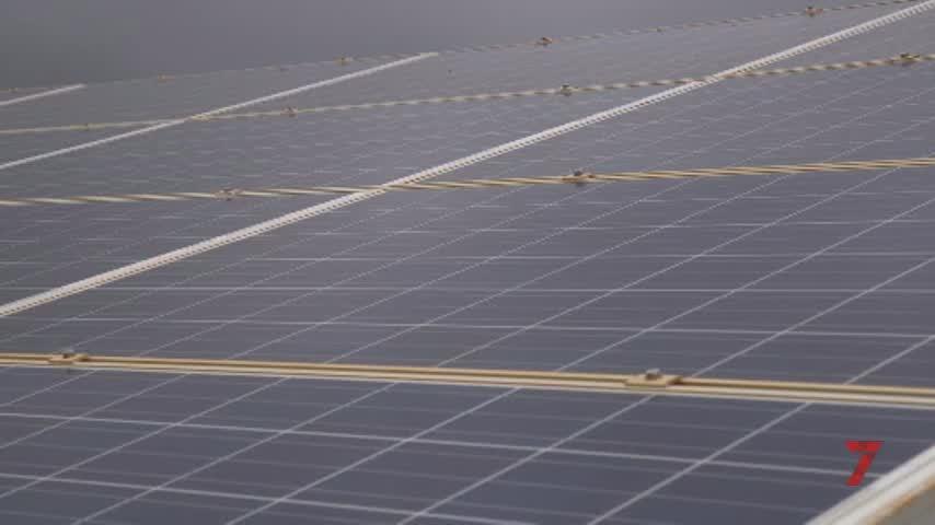 La energía solar puede mover una inversión de 400 millones en Jerez