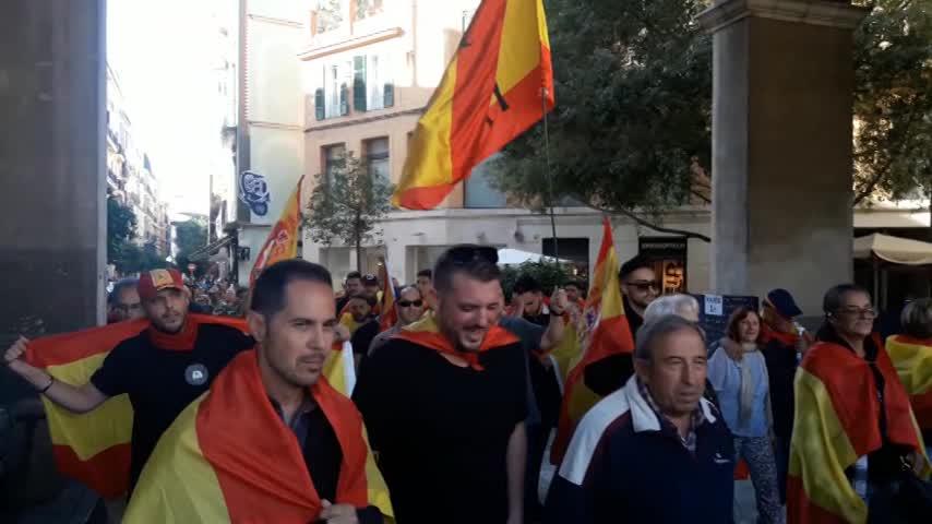 Manifestación a favor de los Cuerpos y Fuerzas de Seguridad del Estado