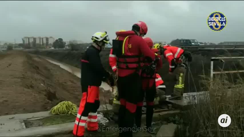 Los bomberos actúan en Pino Montano para evitar inundaciones