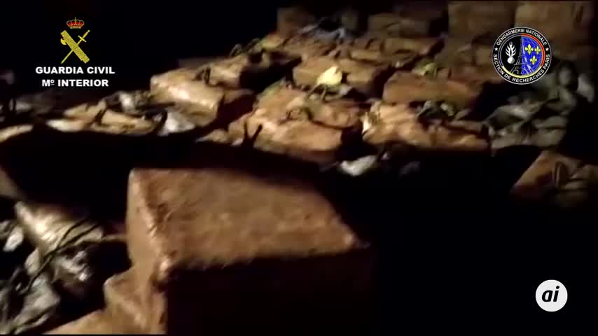 Caen 26 narcotraficantes que transportaban hachís de Málaga a Francia