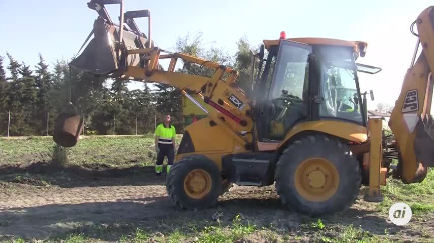 Medio Ambiente inicia un plan de arbolando plantando 300 ejemplares