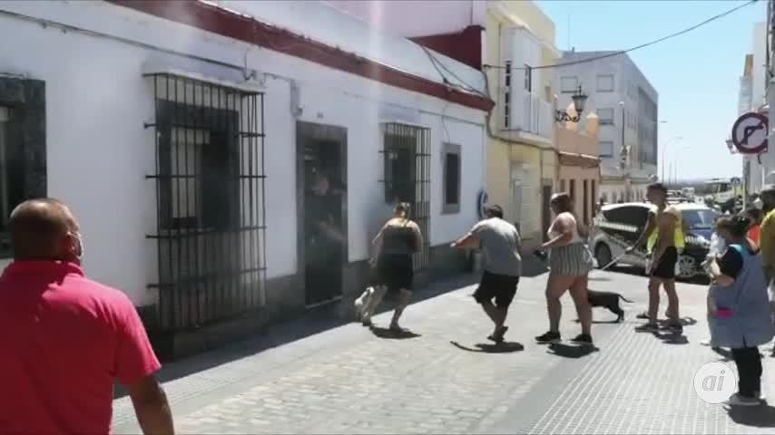 Policías locales salvan a un perro en un incendio en la calle Alsedo
