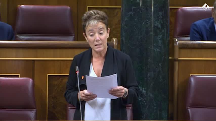 Calvo renuncia a defender a Felipe González en el Congreso