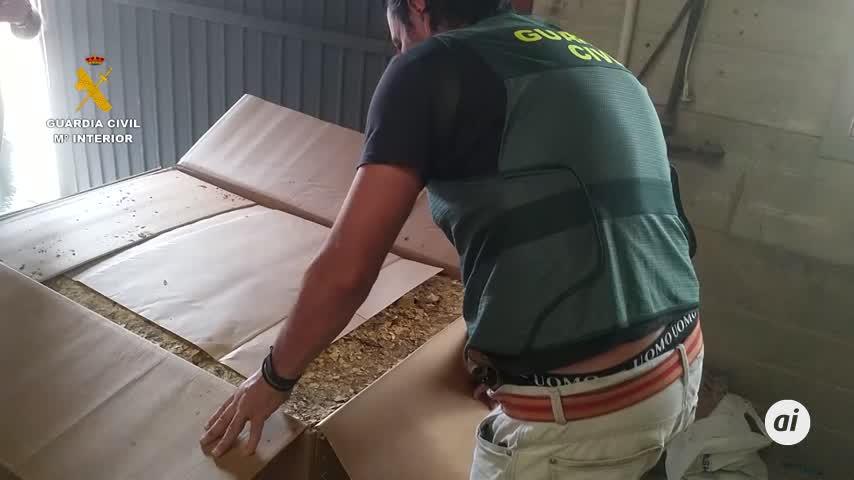 Desmantelada en Sevilla una red de contrabando de picadura de tabaco