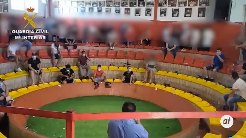 Desmantelada una multitudinaria pelea de gallos en Córdoba