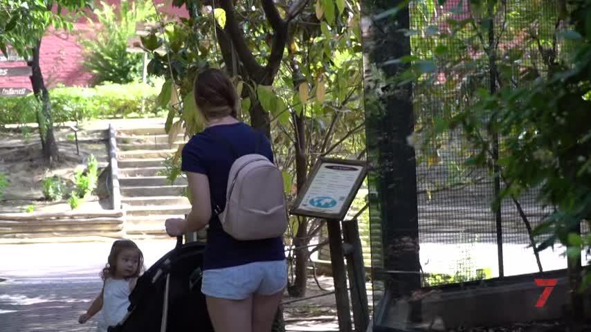 El Zoo de Jerez reabre con nuevas normas y medidas de seguridad