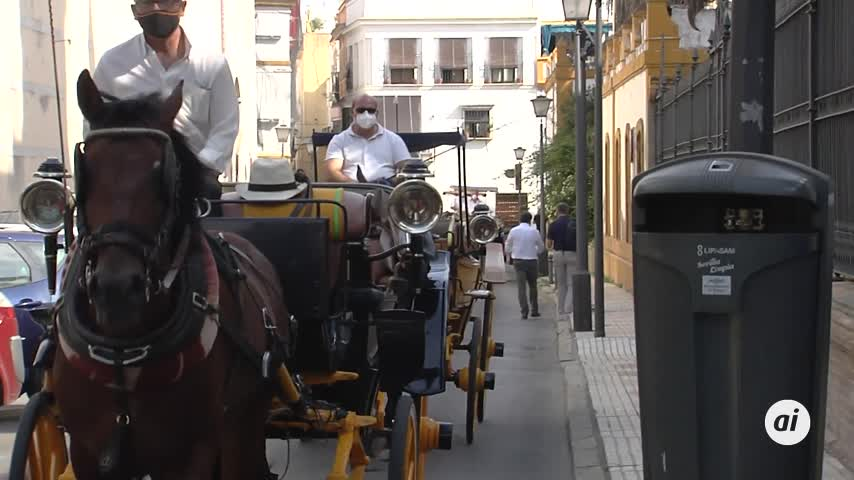Paseos en coches de caballos gratis para ancianos en residencias