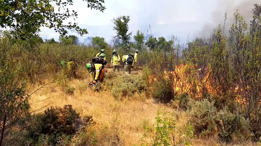 Controlado el incendio forestal en un paraje de Cabezas Rubias