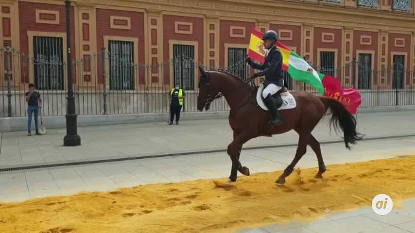 La X Gran Semana Anglo-árabe reúne a los mejores caballos y jinetes en Sevilla
