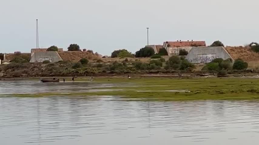 Desembarco de hachís en Fadricas a plena luz del día y persecución policial