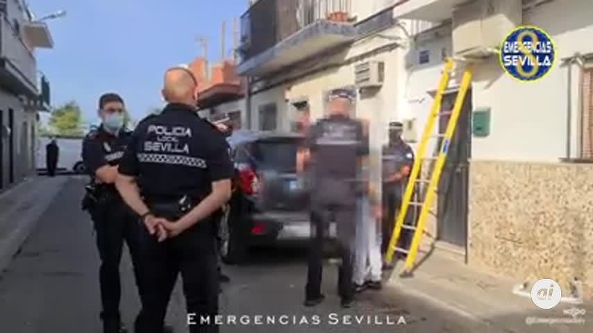 Detenido tras localizar en su casa en Palmete 600 plantas de marihuana