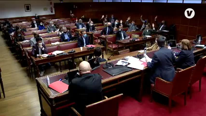 Cs y Landaluce no convencen al Senado con su propuesta de singularidad para la comarca
