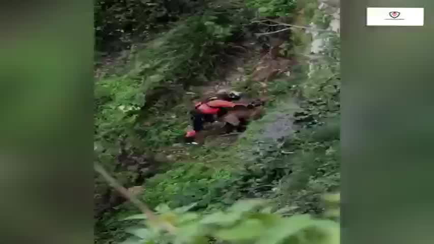 Complicado rescate por los bomberos de un perro tras caer por el Tajo de Ronda