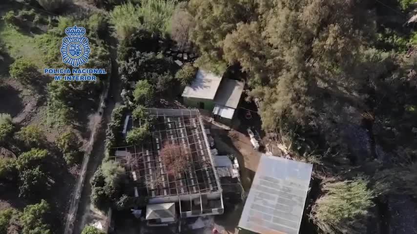 Desarticulan un punto de venta de drogas en una finca dedicada a cría de gallos en Málaga
