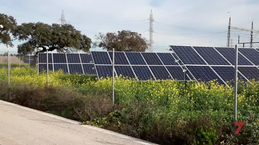 """La Junta declara """"de interés estratégico"""" el proyecto fotovoltaico de Repsol en Jerez"""