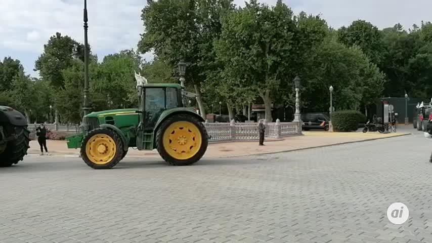 Una tractorada del campo de la provincia de Sevilla para evitar el