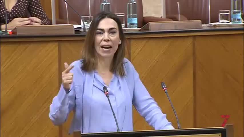 Cs pide al PSOE que se disculpe por los casos de corrupción en Andalucía