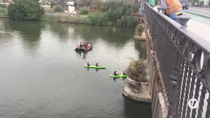 Greenpeace descuelga una pancarta en el puente de Triana para exigir el Plan Respira