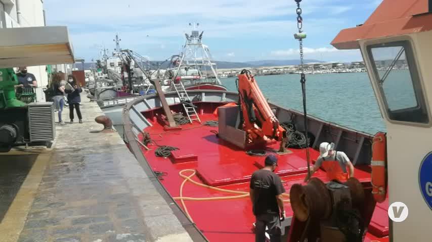 Los primeros atunes rojos de almadraba de esta temporada llegan al puerto de Barbate