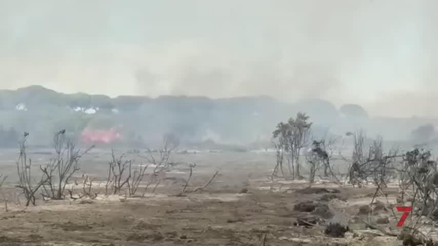 Arde más de una hectárea de pasto y matorral en el Pinar de La Algaida