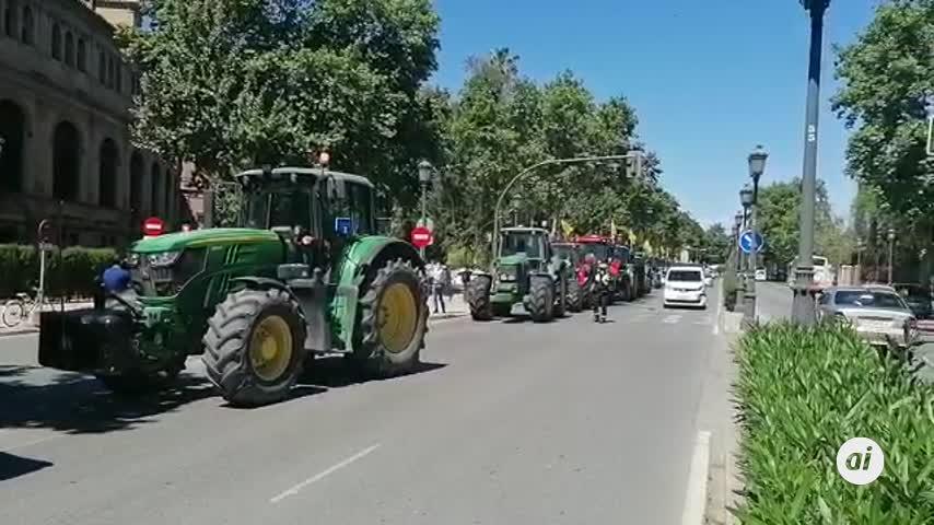 El Bajo Guadalquivir reclama con una tractorada un reparto de agua