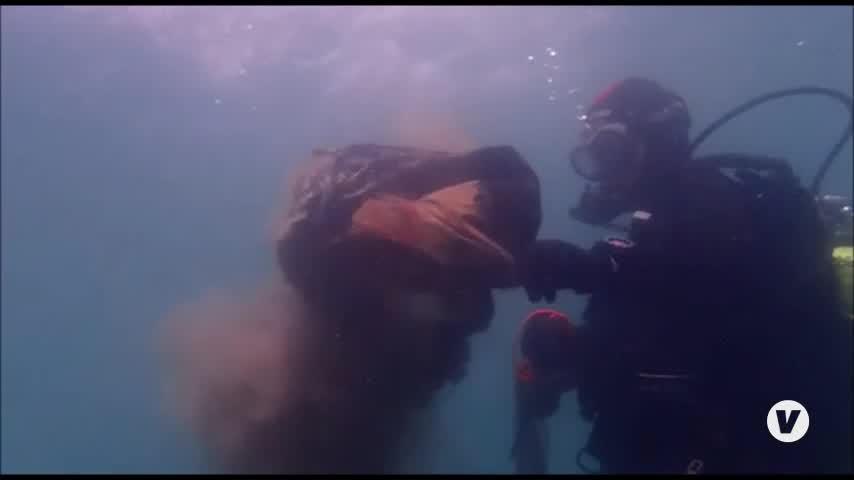 Protesta submarina por la biodiversidad del Estrecho