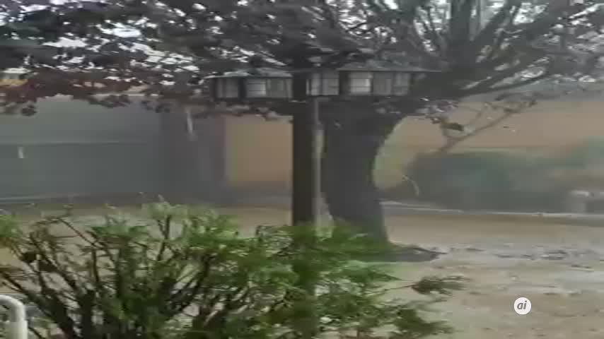 La DANA deja lluvias intensas, miles de rayos y daños