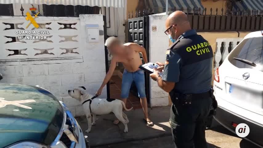 Dos detenidos por matar y maltrato a perros en guardería de El Álamo