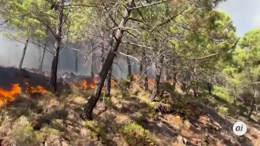 Un bombero forestal pierde la vida mientras trabajaba en el incendio de Sierra Bermeja