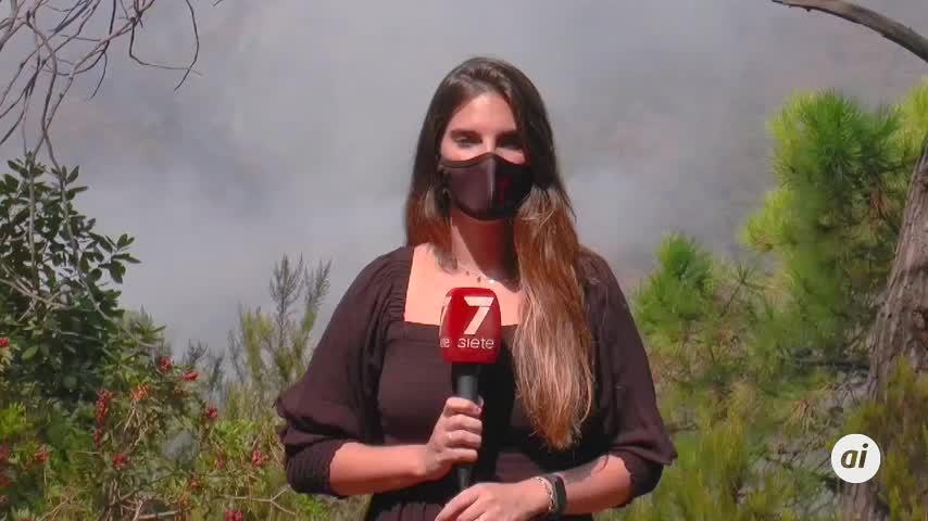 El incendio de Sierra Bermeja afecta a unas 5.000 hectáreas con un perímetro de 41 kms