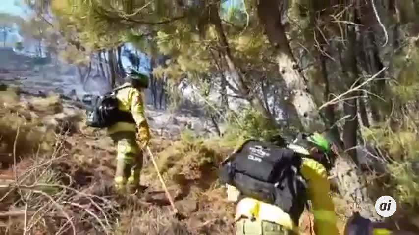 Sierra Bermeja arde y sus vecinos lloran